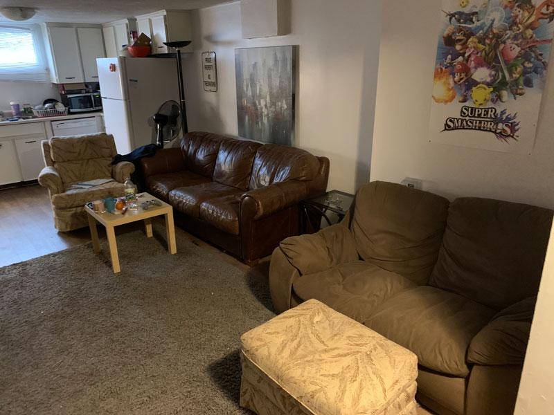 260 Cook Street – Lower, Living Room