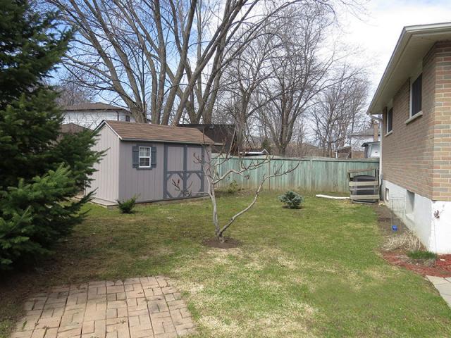 282 Cook – Lower, Backyard