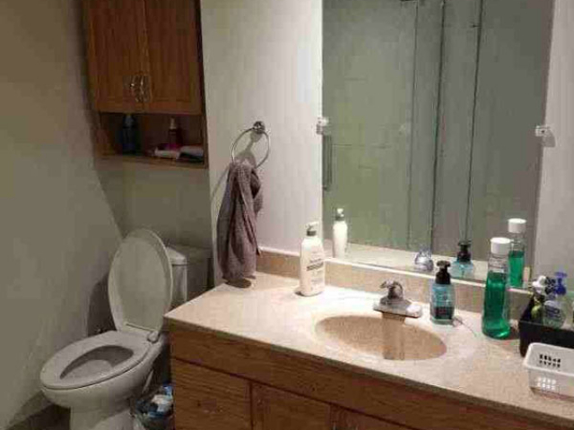 81 College-Lower, Bathroom
