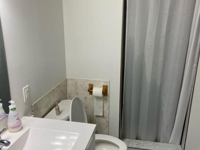 282 Cook Street – Lower, Bathroom